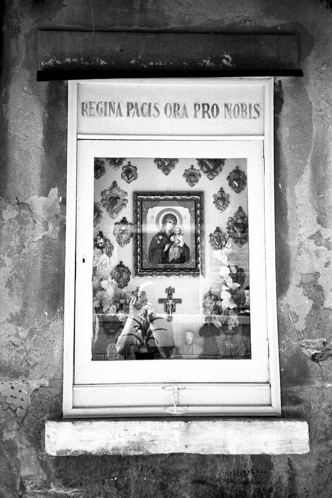 Regina Pacis Ora Pro Nobis
